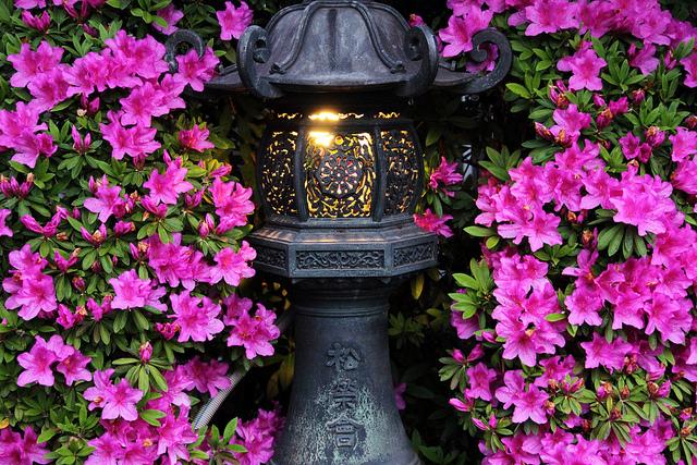 Jak wybrać lampy do ogrodu?