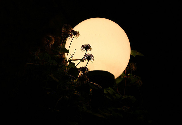 Wszystko o lampach ogrodowych